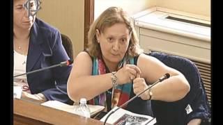 Giuseppina Montanari - Audizione Commissione parlamentare di inchiesta Periferie