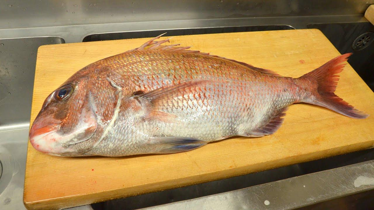 寿司職人による真鯛の仕込みから握りまで〜How To Make Red sea bream Sushi〜
