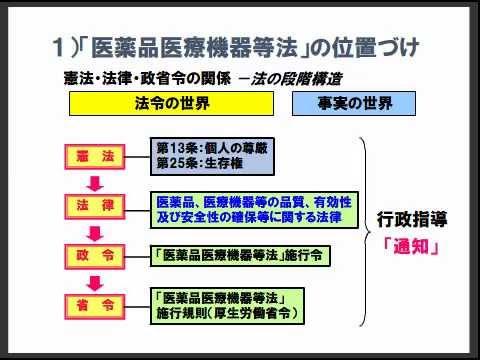sample-S-01①医薬品医療機器等法...