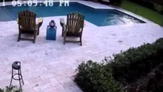 Girl dives into the swimming pool to save her Hoverboard - ORIGINAL WITH SOUND