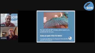 Curs d'identificació d'aus. 3 - Aus de prat