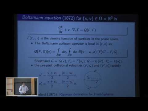 On the Boltzmann equation without angular cut-off - Robert Strain