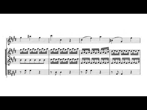 "Violin Concerto ""Spring / La Primavera"" in E major, Op. 8 No. 1 - Vivaldi (Score)"
