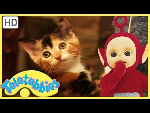 Teletubbies Full Episode - Kittens ★ Episode 182 - HD
