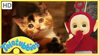 Repeat youtube video Teletubbies Full Episode - Kittens ★ Episode 182 - HD