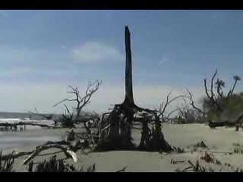 Boneyard Beach South Carolina