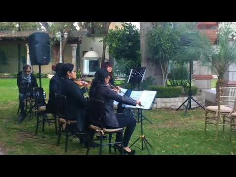 Bell Art Cuarteto