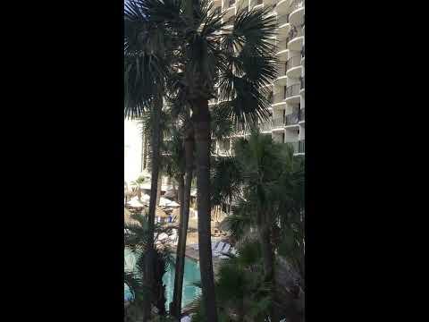 Travel Vlog Panama City Beach, Florida - Holiday Inn Resort - March 5, 2017
