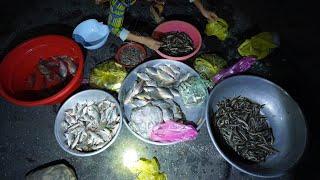 """Ghé chợ cá """"ma"""" chỉ họp vài tháng mùa nước nổi - Khám phá vùng quê"""