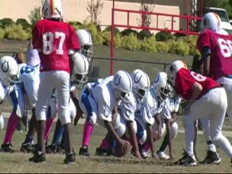 Colts 2010