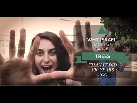 Why Israel Has More Trees Now Than It Did 100 Years Ago