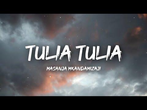 Download Masanja Mkandamizaji - Tulia Tulia (Lyrics/Lyrics Video)