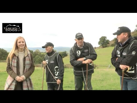 Sheepdog Trial - Semi Final 1 - 'A Way with Dogs' - Series Two