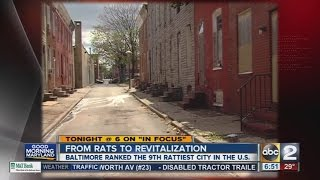 Baltimore: From rats to revitalization