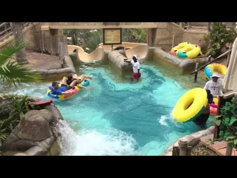 Choose Your Slide - Wild Wadi Waterpark