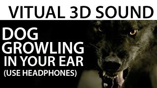 Dog Growling In Your Ear SOUNDS REAL! (VIRTUAL 3D SOUND)