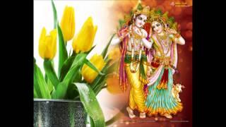 Shyam tere kitne naam - lord krishna bhajan