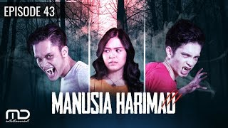 Manusia harimau -  Episode 43