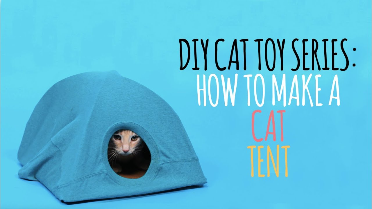 DIY Cat Toys - How to Make a Cat Tent - YouTube