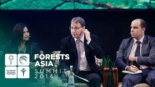 Forests Asia Summit 2014 - Day 2, The role of the private sector in delivering green growth