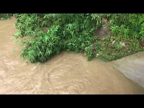 Japan Typhoon Kyoto River Flood