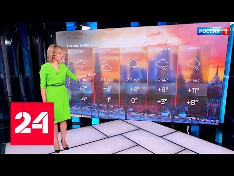 Погода в столице: четверг станет самым холодным днем на этой неделе - Россия 24