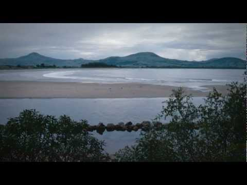 Otago Peninsula wildlife - Roadside Stories