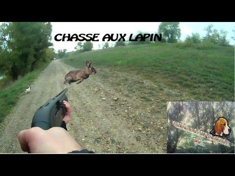 Chasse Beagle: Saison 2013/2014: camaraderie de chasseur