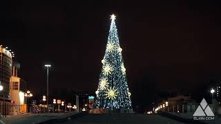 Ёлка Вселенная. Ёлкин Дом | Christmas tree Сosmos. . Elkin Dom