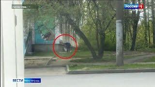 В Костроме задержали подвального вора-проныру