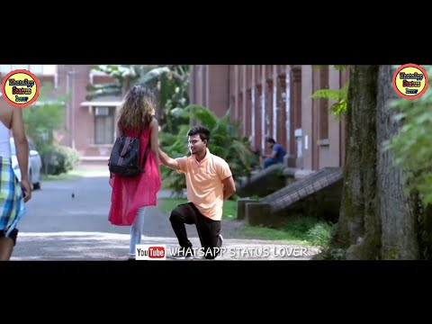 Downloadhappy Rose Dayromantic College Love Story