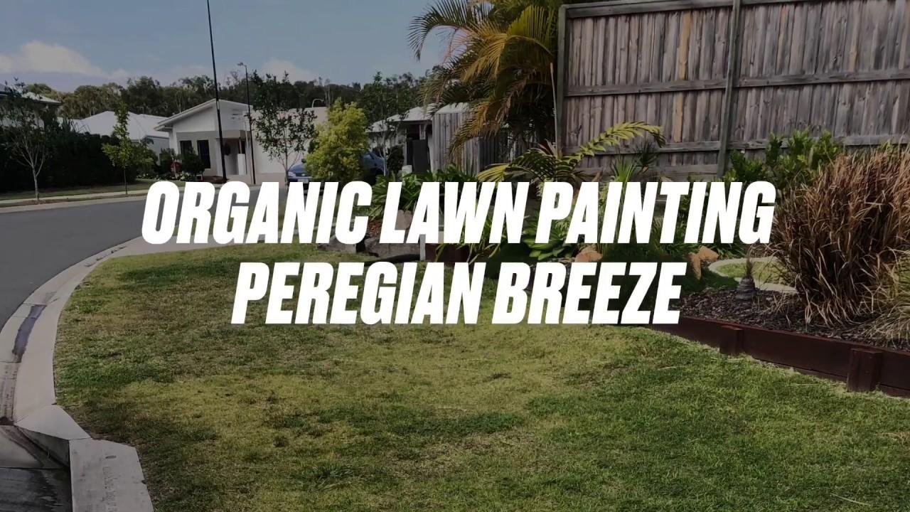 PEREGIAN BREEZE GOES GREEN