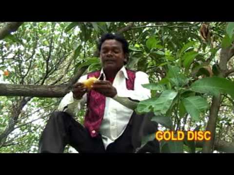 Santali Short Story | Jupur Juli Vol I | Latest Santali Hits | Gold Disc