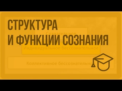 Видеоурок по теме сознание