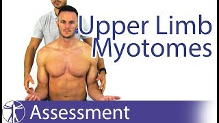 Myotomes Upper Limb | Peripheral Neurological Examination