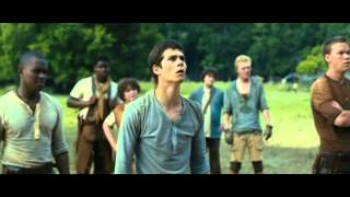 The Maze Runner - I'm so sorry