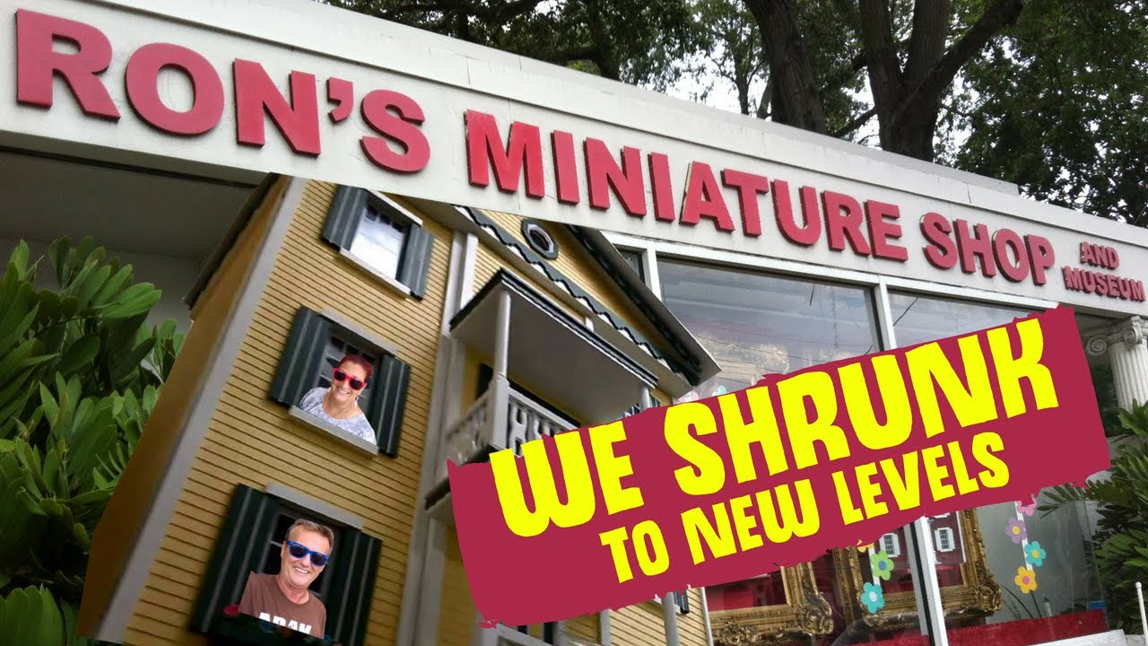 Ron's Miniature Shop  We Shrunk to New Levels