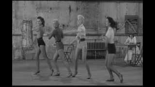Bill Haley & His Comets - Hot Dog Buddy, Buddy -1956 (HD)