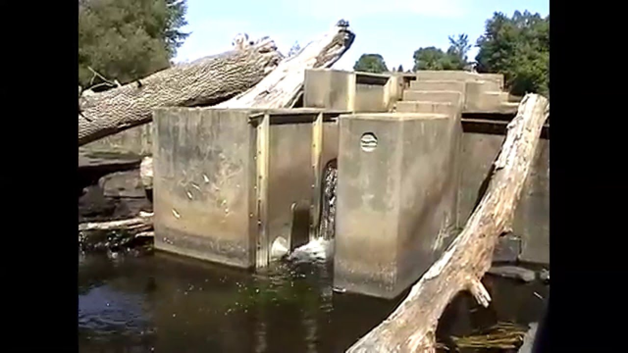 Frog Farm Dam Update  8-20-12