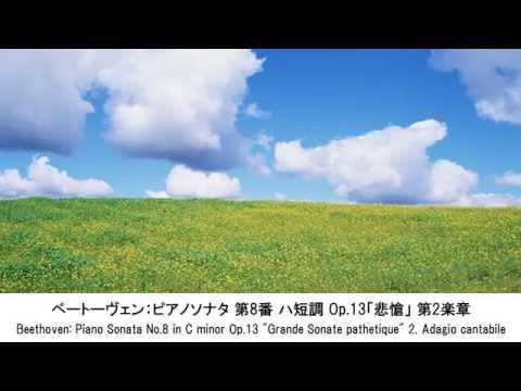 静かなクラシック名曲集・Quiet Classical Music Collection(長時間作業用BGM)