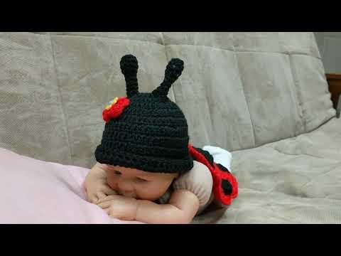 Almenos quiero esto   Miraculous ladybug party, Miraculous ladybug ...   360x480