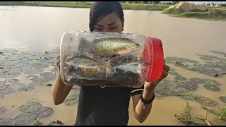 Wow!! Clever Girl Catch A Lot Of Fish Using Bottle Plastic Fish Trap