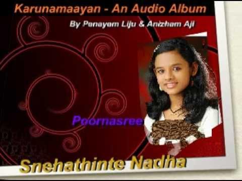 Karunamayan- A Christian Devotional  Audio Album By Panayam Liju & Anizham Aji
