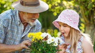 Как научиться уважать старших в семье, если видишь, что они не правы?