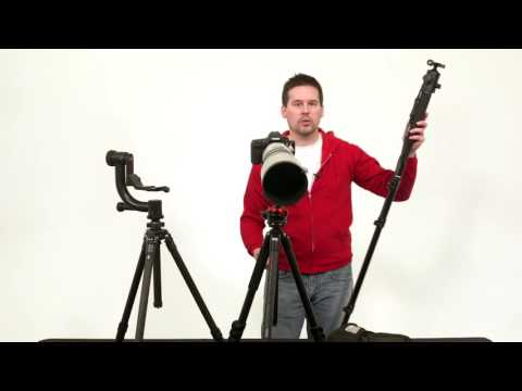 Wildlife Photography Equipment: Tripod Heads