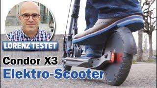 Der Schweizer Elektro-Scooter flitzt ganz legal    LORENZ TESTET  
