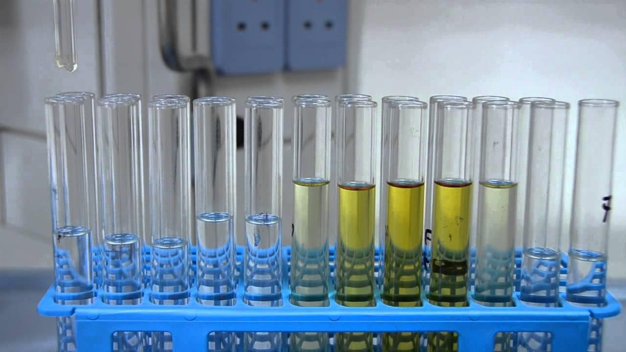 column chromatography of plant pigments 36b-bioorganic modifications for technique experiments technique of column chromatography experiment title: applying column chromatography as a method to isolate plant leaf pigments.