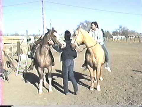 Duran Hangout   Horseback Riding