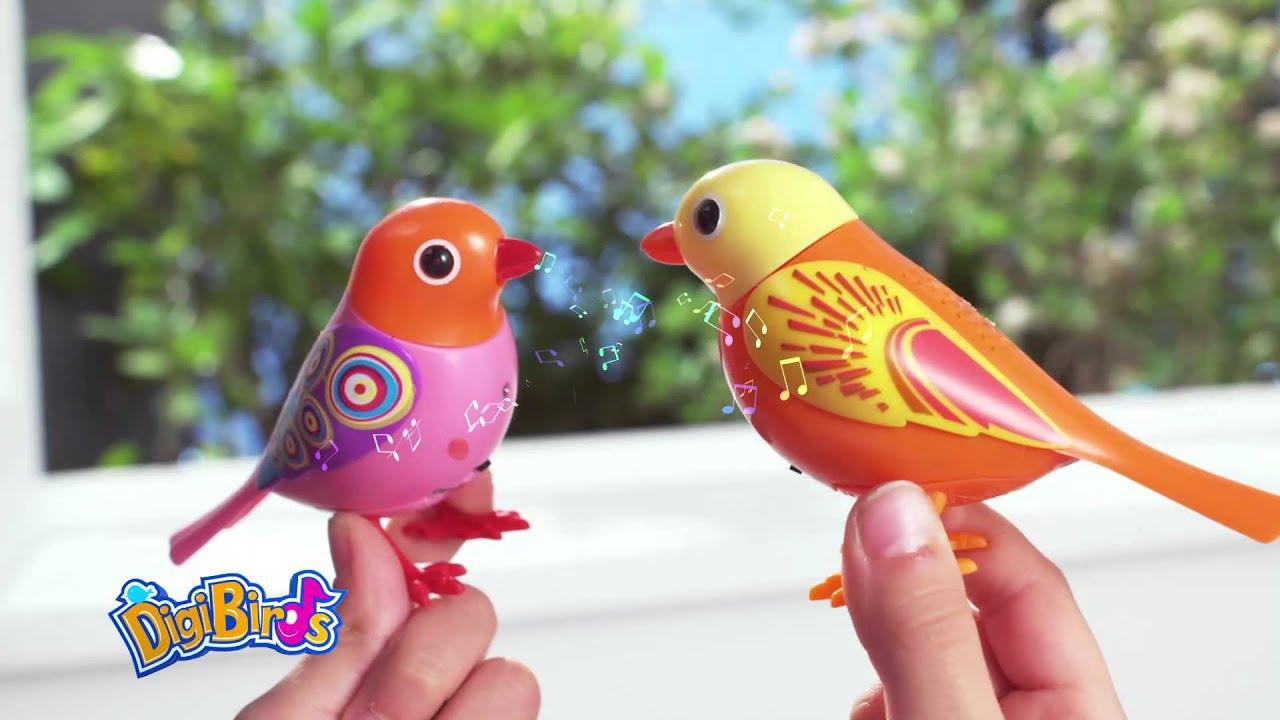 zingende uiltjes speelgoed