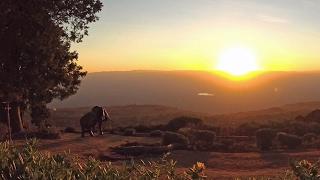 Paragliding Kenya Rift Valley jan 2017